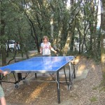 aire de jeux tennis de table